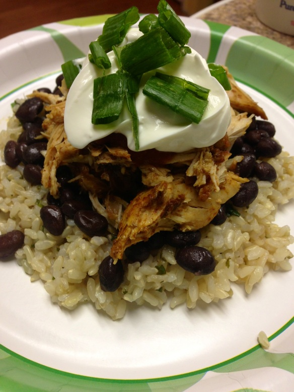 Chicken Mexican dish 1