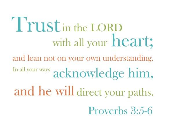 Proverbs 3 5 6